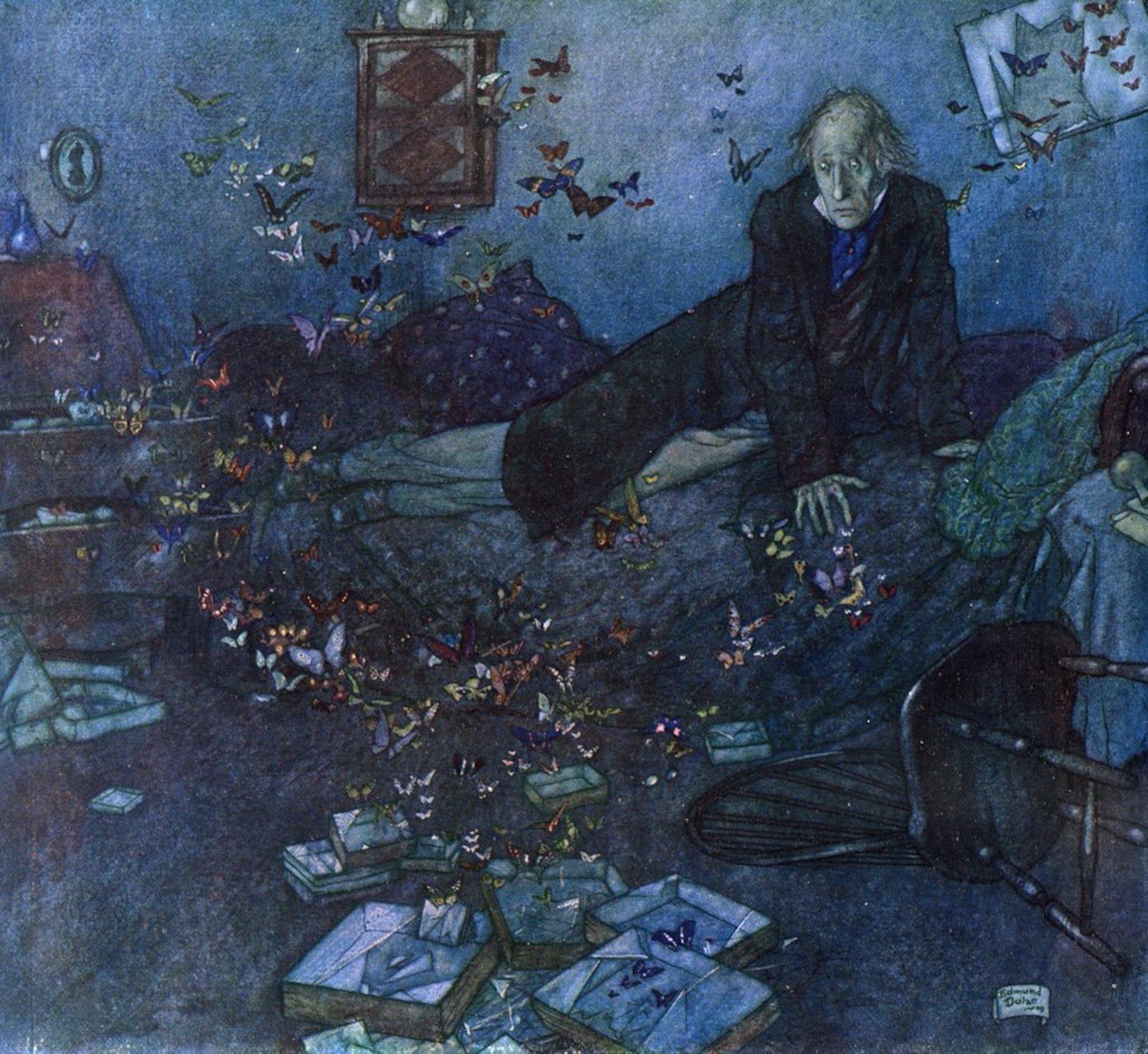 'The Entomologist's Dream'