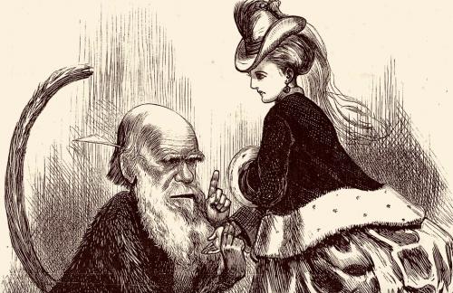 Samantha Evans' Darwin & Women